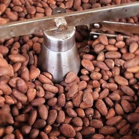 Kakao Bohnen Röstung | ATTIMO Chocolatier in Zürich