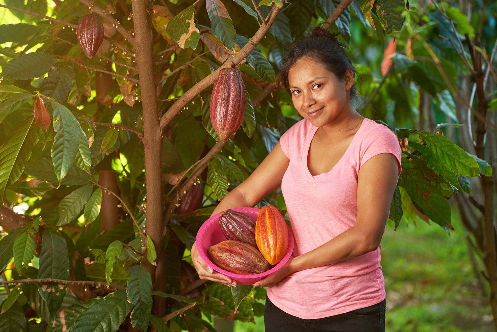 Kakao Farmerin | Attimo feinste Pralinen